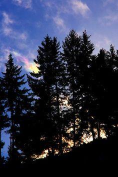 Beautiful NCW - photo by McGlinns in Wenatchee