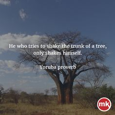 He who tries to shake the trunk of a tree, only shakes himself - Yoruba proverbs Poetry Quotes, Wisdom Quotes, Words Quotes, Life Quotes, Quotes Quotes, Wise Proverbs, Proverbs Quotes, Funny Proverbs, Yoruba Proverbs