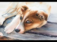 How To Paint A Dog In Watercolor Painting Tutorial Youtube