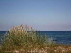 North coast of Fehmarn, Baltic Sea