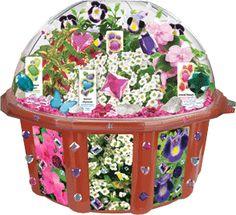 Dunecraft Butterfly Glamour Garden