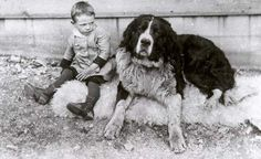 Image detail for -Newfoundland Dog and Boy: Memorial University's Archival Treasures