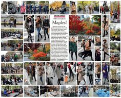 Bill Cunningham | Maples! - NYTimes.com