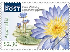 Set of three International Water Plants stamps-full description below.