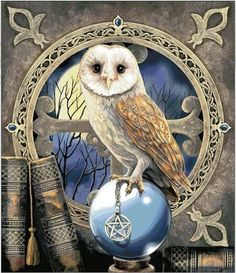 Owl new needlework full square drill diamond painting diy cross stitch embroidery mosaic home decoration Cross Stitch Designs, Cross Stitch Patterns, Stitching Patterns, Cross Stitching, Cross Stitch Embroidery, Embroidery Kits, Buho Tattoo, Owl Artwork, Owl Pictures