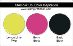 Stampin' Up! Color Inspiration: Lemon Lime Twist, Berry Burst, Basic Black