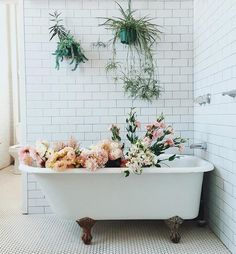 in the tub.