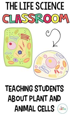 Teaching upper elementary students about plant and animal cells has never been easier! My graders love learning through videos, songs, pictures, and interactive notes. These activities also include a Cells Choice Board with six different project ideas Student Teaching, Teaching Science, Life Science, Teaching Numbers, Teaching Ideas, Earth Science, Teaching History, Science Lessons, Elementary Science