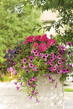 Romantic Wall Swag Container | Enjoy nonstop color all season long with these container gardening ideas and plant suggestions. You'll find beautiful pots to adorn porches and patios. You may not have the space or patience to become a master gardener, but anyone can master container gardening. It's a cinch—all you need is a container (a planter in true gardener speak), potting soil, some plants and you're ready to go. Thinking of container gardening like this, it's easy to see why container