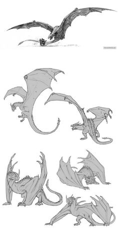 Creature Concept Art, Creature Design, Creature Drawings, Animal Drawings, Dragon Anatomy, Dragon Poses, Fly Drawing, Dragon Sketch, Fantasy Beasts