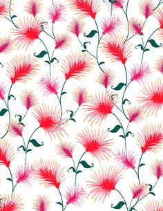 Fabric Printing on 20 different types of fabric! Explore the Bottlebrush  Collection from Katja Ollendorff. eebf56f376d
