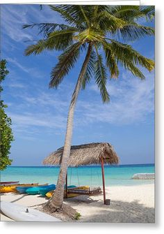 Sunny Day At The Kuramathi Island In Maldives Greeting Card by Yana Reint #YanaReintFineArtPhotography #FineArt #Cards #GreetongCards #postCards#Artforhome #Maldives