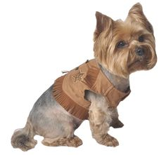 Max's Closet Sheriff Dog Vest, Small, Natural *** Wow! I love this. Check it out now! : Dog shirts