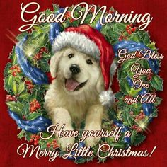 Good Morning, Have Yourself A Merry Little Christmas! christmas good morning good morning quotes good morning sayings good morning image quotes good morning christmas quotes Christmas Puppy, Christmas Post, Merry Little Christmas, Christmas Animals, Christmas Pictures, Christmas Humor, Good Morning World, Good Morning Good Night, Good Morning Images