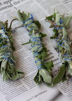 Bug-repellent herb bundles to burn with a bonfire