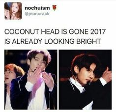 coconut, meme, and funny image