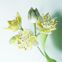Цветы плодовых и декоративных деревьев из фоамирана