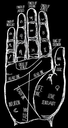 Does Your Palm Reveal About Your Personality? Im a passionate person seeking freedom in my evey day life.Im a passionate person seeking freedom in my evey day life. Witch Aesthetic, Book Of Shadows, Passionate Person, Numerology Chart, Numerology Numbers, Black White, Black Art, Calligraphy Alphabet, Islamic Calligraphy