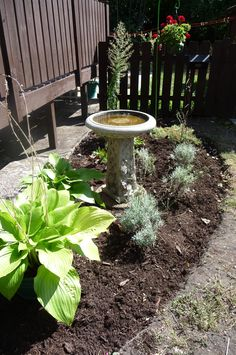 """We've been moving (and moving), but most of our boxes are now unpacked. Depicted is the beginnings of our new """"Mary Garden.""""  (Mary is located, for the time being, at the base of the birdbath.) We'll keep you updated. Photo by Jeanette O'Toole, 9-13-13."""