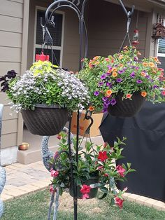 Flower Containers, Plants, Flora, Plant, Window Boxes, Planting, Flower Planters