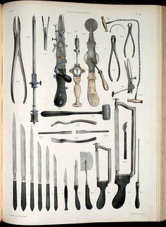 Anatomy Illustrations 1800s | Flickr - Photo Sharing!