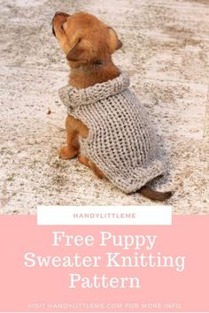 Dachshund  dog sweater in  chunky cream knit trimmed with black fun fur knitting yarn fringe.