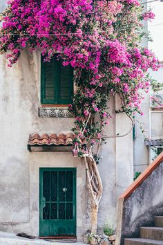 "Italy Photography, ""A Burst of Color"" Italian Door Print, Fine Art Photography, Home Decor, Travel Wall Art - Art photography Bougainvillea, Italian Doors, Beautiful Flowers, Beautiful Places, Mode Poster, Travel Wall Art, Fine Art Photography, Photography Studios, Photography Jobs"