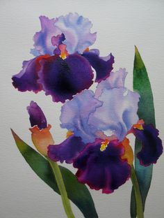 Clay Pot, painting by artist Justin Clements Lavender and Purple Irises.Nel Jansen MoreLavender and Purple Irises. Iris Painting, Watercolour Painting, Watercolor Flowers, Painting & Drawing, Watercolors, Iris Art, Purple Iris, Arte Floral, Gouache