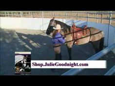 How to teach a horse to round & put his head down