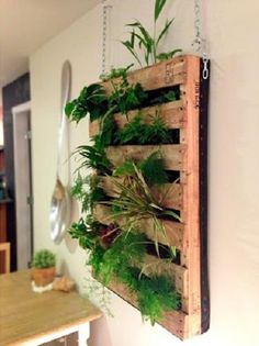 magnoliajones:    Shipping pallet upcycled to a hanging wall planter via Beers-N-Beans  Click the link for step-by-step instructions …    Upcycling + Recycling + Gardening = Fresh herbs and lovely decor for your patio or (if you're extra ambitious) kitchen.