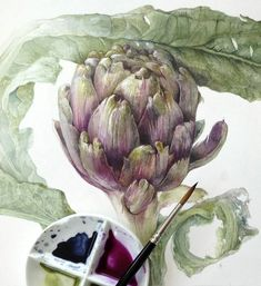 Artichoke watercolor