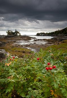 East Boothbay, Maine Coast.