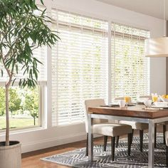 Bali in. Double Beveled Composite Faux Wood Blind, x Custom Blinds For Large Windows, Blinds For Windows Living Rooms, Blinds For French Doors, Window Blinds, Modern Window Coverings, White Wood Blinds, Custom Blinds, Modern Blinds, Blinds Design