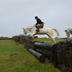 Freddy hunting Dec 2019. #loveirishhorses #horsesinireland #horseforsale Cross Country Jumps, Beach Rides, Saint Stephen, Horses For Sale, The Locals, Over The Years, In The Heights, Equestrian, Ireland