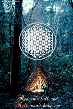 And the Snakes Start to Sing -Bring Me the Horizon
