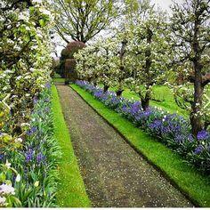 "Joe Ruggiero on Instagram: ""@bloomsandbounty Beautiful #gardenwalk #espalier #formalgarden #garden #gardening"""