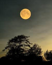 Image result for moon photography