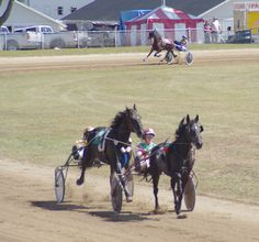 Harness racing at the St. Joseph County Grange Fair. Owner Cheryl Lombard