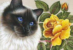 Ragdoll Cat and Yellow Rose Irina Garmashova
