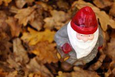 https://flic.kr/p/PnD5Y1 | Anunciando la llegada de la Navidad | Fotografía tomada en los alrededores de Lugo
