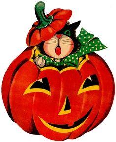 Halloween •~• vintage illustration of black cat in jack-o-lantern