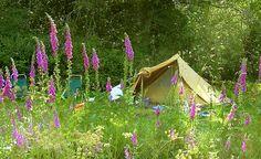 Camping La Chassagne Ronnet