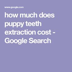 how much does puppy teeth extraction cost - Google Search