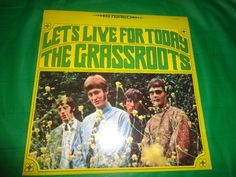 The Grass Roots Let's Live For Today vintage music record find me at www.dandeepop.com
