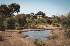 Makumu Private Game Lodge, Kruger Park, Südafrika - Luxus & spektakuläre Safaris (+Video) - Beautiful Places for Lovers!