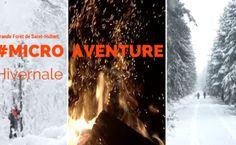 MicroAventure hivernale – Grande Forêt de Saint-Hubert
