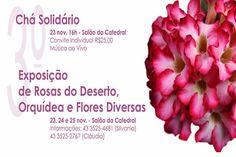 Exposição de Orquídeas - http://projac.com.br/noticias/exposicao-orquideas.html