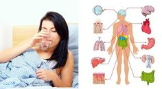 Drink water first thing in the morning for these 5 reasons!