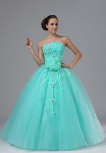 Hot Apple Green Custom Made Dresses For Prom Queen with Appliques