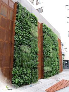 Zielone ściany Greenarte